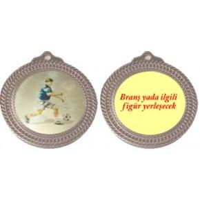 2. lik Madalyası